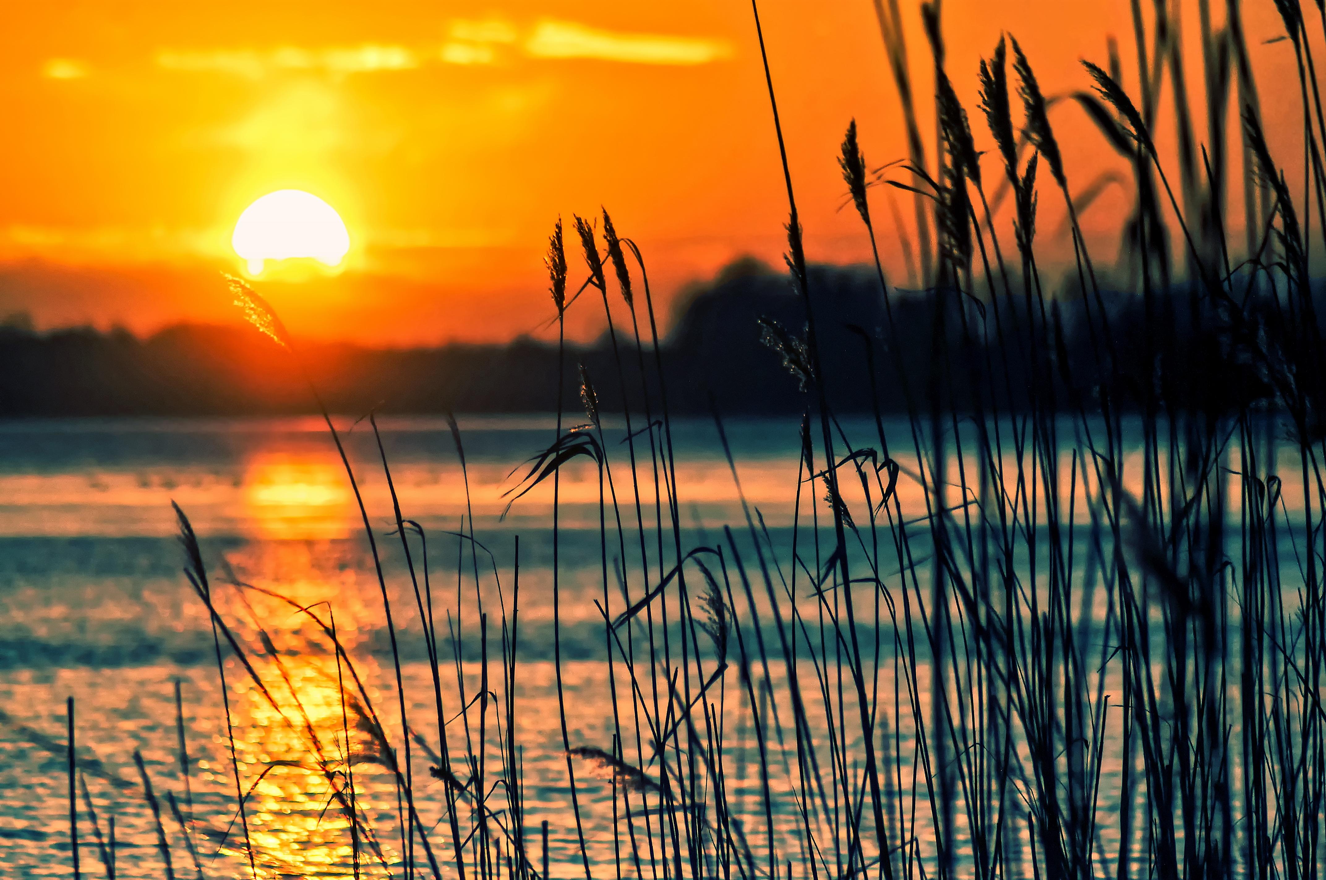 закат озеро небо трава  № 3878841 бесплатно